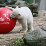 Виды туризма в Канаду