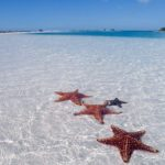 Что нужно знать туристу о Кубе