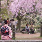 Лучшие страны мира для любителей цветов